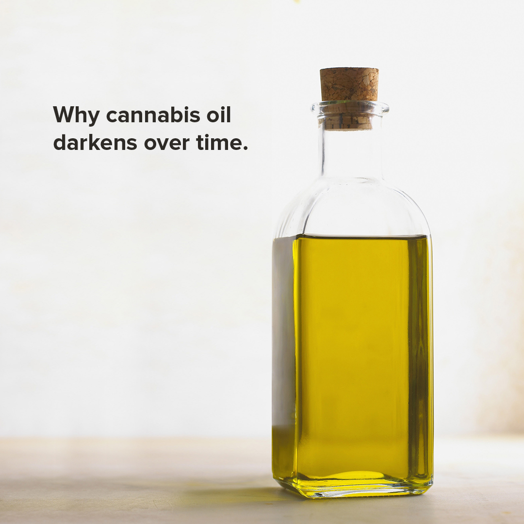 Why Cannabis Oil Darkens Over Time